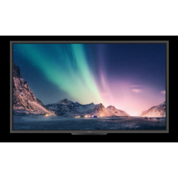 Newline TT-6520HO - touch panel 65 inch
